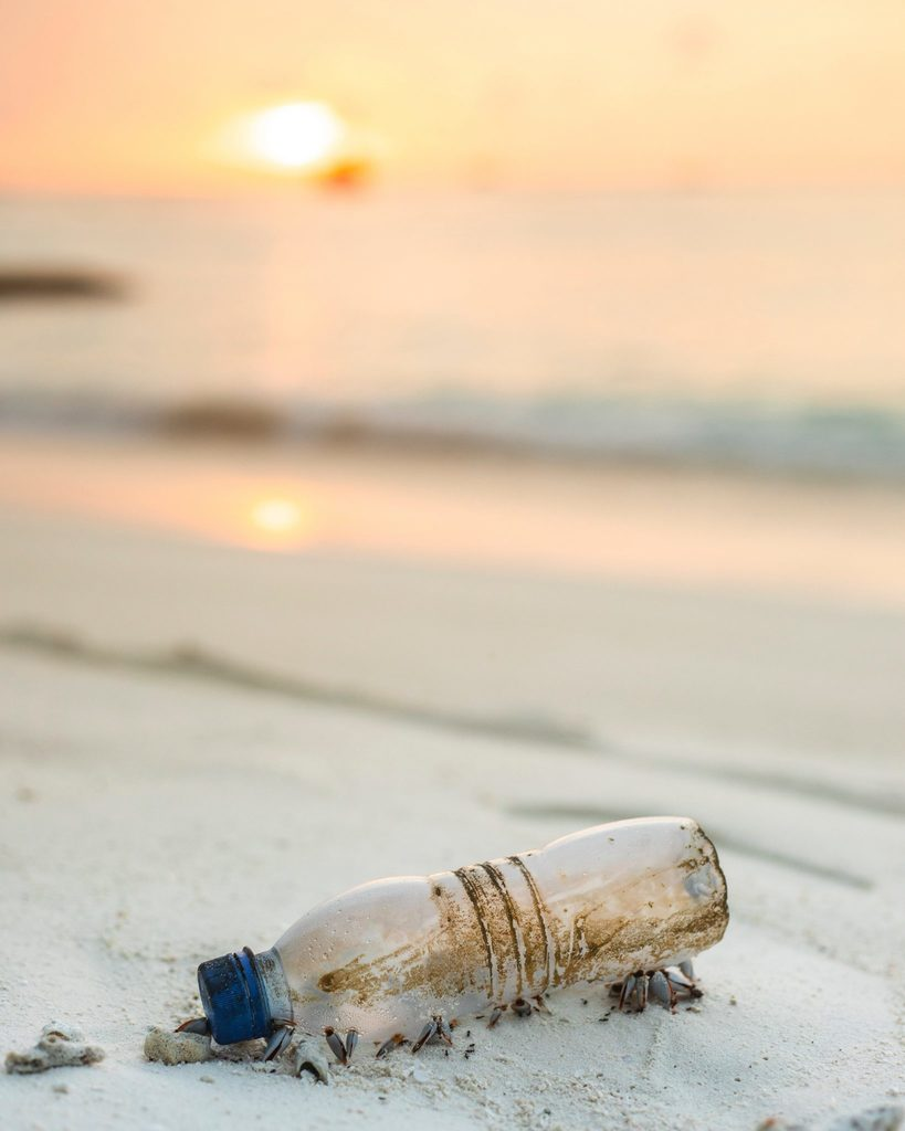 A beach clean or litter pick is a great introduction to CSR for your small business.