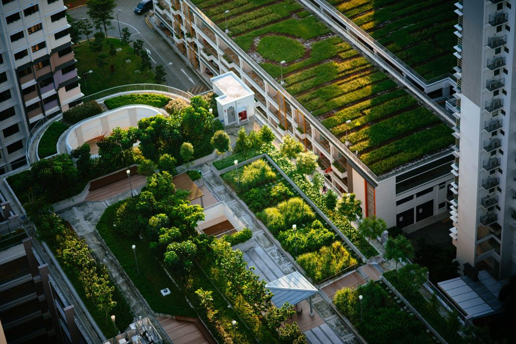 Green cities will play a big part in the fight against climate change.