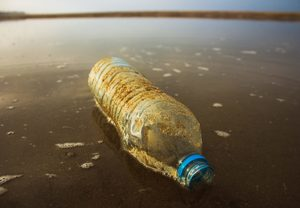 Plastic is an enduring issue of our time.