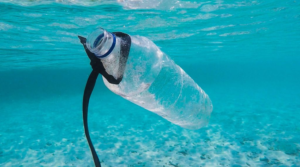 plastic-free body image 2 - plastic bottle floating in the sea