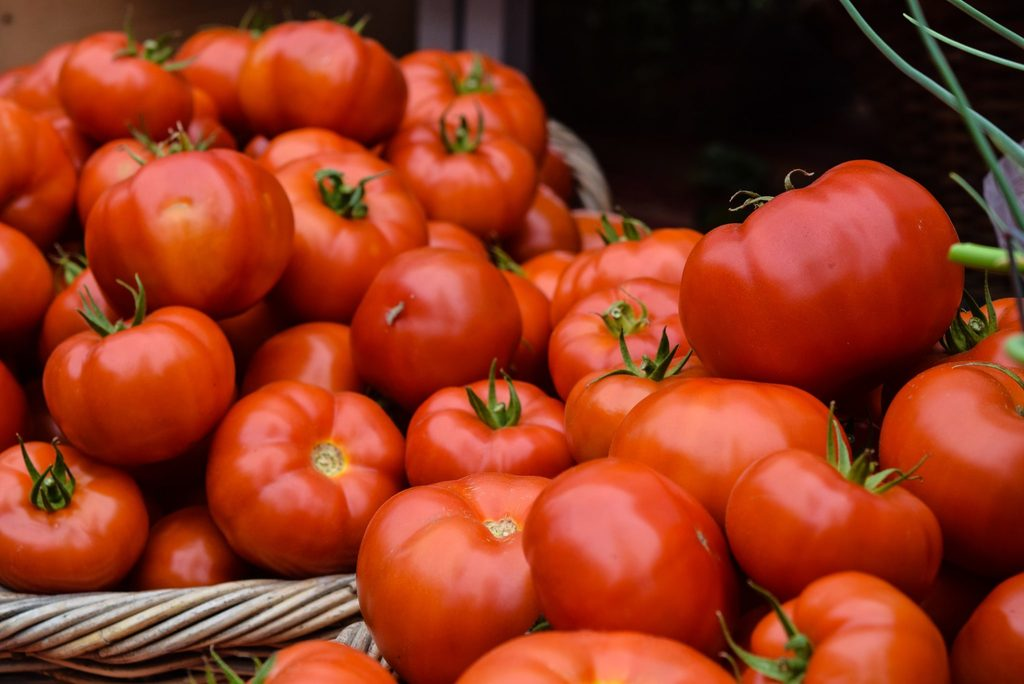 reconnect with sustainability body image 1 - big locally grown tomatoes
