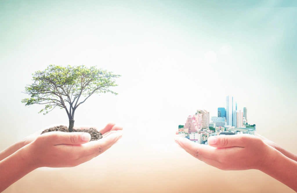 a picture of two pairs of hands. one has a tree in it and the other a city. Highlighting the balance between development and being more in line with nature as the united nations sustainable development goals suggest